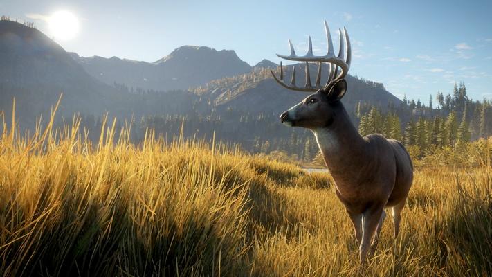 《獵人:野性的呼喚》:怎樣打造最美的狩獵場景